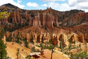 Actually, hoodoos are  made of rock. Hoodoos is the name for the columns of eroded stone in Bryce Canyon National Park. This was tken along the Fairyland Loop Trail.